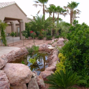 Las Vegas home water feature
