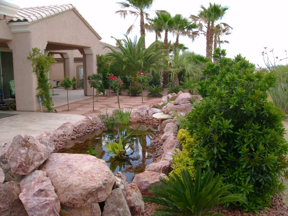 ... Backyard Las Vegas Home Water Feature Landscape ...