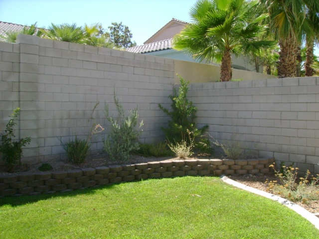 grass and small plants in Las Vegas