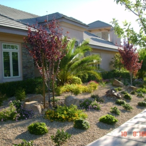 Landscape Design for Las Vegas home