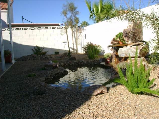 backyard with pond, rocks and small plants in Las Vegas