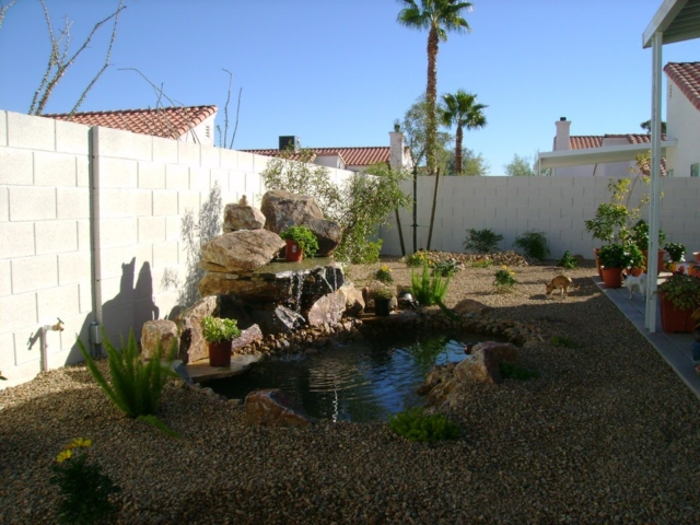 pond and small plants in a Las Vegas backyard